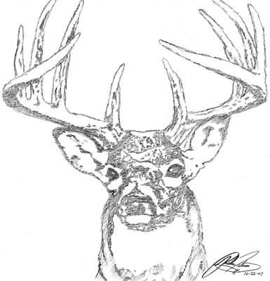 Deer Drawing - Buck Sketch by Richie Tatum