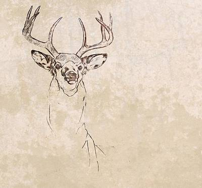 Photograph - Buck Unfinished Art by JAMART Photography