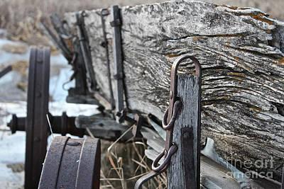 Photograph - Buckboard Wagon by Ann E Robson