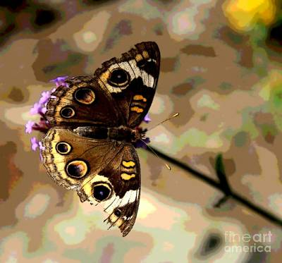 Southern Indiana Digital Art - Buckeye Butterfly - Abstract Browns  by Scott D Van Osdol