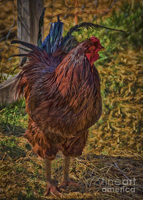 Cage Painting - Buckeye In The Barnyard by Janice Rae Pariza