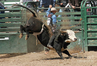 Of Rodeo Bucking Bulls Photograph - Bucking Bulls 101 by Cheryl Poland