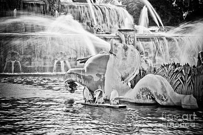Seahorse Photograph - Buckingham Fountain Chicago by Paul Velgos
