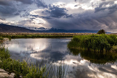 Photograph - Buckley Ponds by Cat Connor