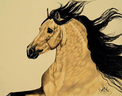 Drawing - Buckskin Andalusian - Dream Horse Series #3300 by Cheryl Poland