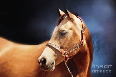 Western Pleasure Horse Photograph - Buckskin On Blue by Michelle Wrighton