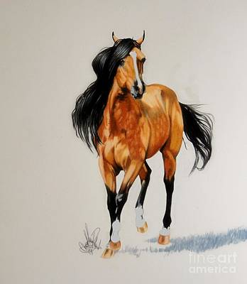 Painting - Buckskin Thoroughbred by Cheryl Poland