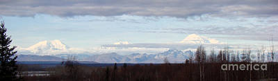 Denali National Park Photograph - Bucolic Fall by Dora Miller