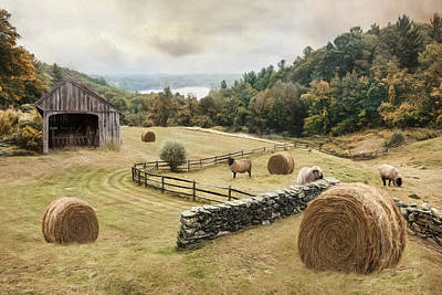 Photograph - Bucolic by Robin-Lee Vieira