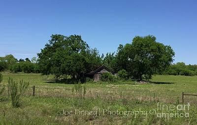 Photograph - Buda Sweet Home - #42116 by Joe Finney