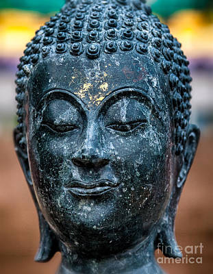 Nose Photograph - Buddha by Adrian Evans