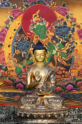 Buddha Statue Photograph - Buddha Blessing by Tim Gainey