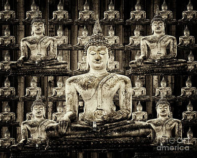 Photograph - Buddha by Bob Christopher
