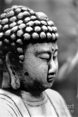 Photograph - Buddha by Eileen Gayle