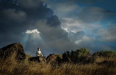 Digital Art - Buddha Field by Rick Mosher