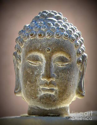Photograph - Buddha Head Statue by Lainie Wrightson