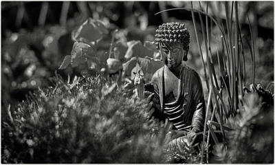 Photograph - Buddha In The Garden by Peter V Quenter