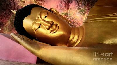 Photograph - Buddha In The Magical Forest by Ian Gledhill