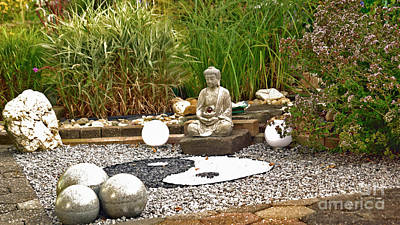 Photograph - Buddha Looks At Yin And Yang by Eva-Maria Di Bella
