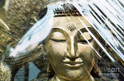 Photograph - Buddha Protected by Dean Harte