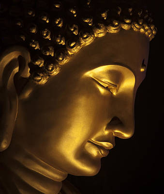 Photograph - Buddha Taken At Fgs Dong Zen Buddhist Temple by Zoe Ferrie