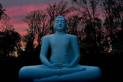 Photograph - Buddha by Terry DeLuco