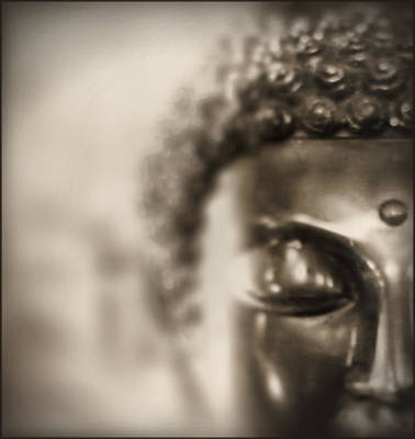 Photograph - Buddha Thoughts by Douglas MooreZart