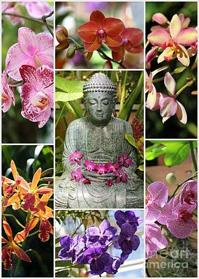 Photograph - Buddha With Orchids Collage by Carol Groenen