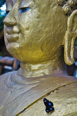Photograph - Buddhafly by Lee Webb