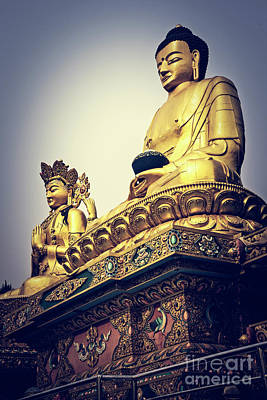 Photograph - Buddhas At Monkey Temple by Scott Kemper