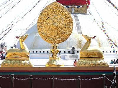 Buddhist Dharma Wheel Art Print by Dagmar Batyahav