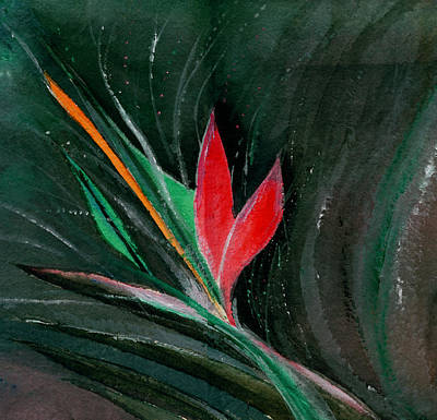 Budding Art Print by Anil Nene