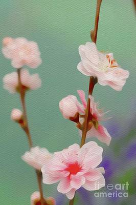 Florals Royalty-Free and Rights-Managed Images - Budding Beauty by Sarah Kirk