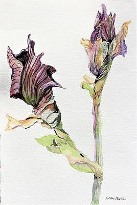 Vignette Painting - Budding Irises by Mindy Newman