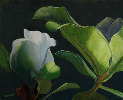 Painting - Budding Magnolia by Sandy Murphree Jacobs
