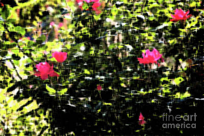 Frank J Casella Royalty-Free and Rights-Managed Images - Budding Pink Flowers - Impressionism by Frank J Casella