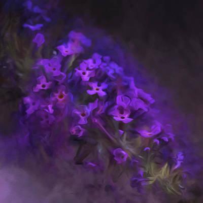Painting - Buddleja Blossom by Bonnie Bruno