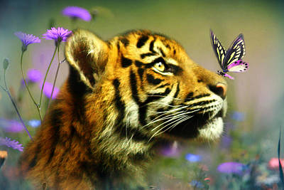 Tiger Cub Digital Art - Buddy And The Butterfly by Trudi Simmonds