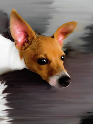 Fox Terrier Digital Art - Buddy In Soft Gray Orange by Heather Joyce Morrill