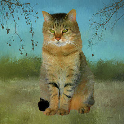 Painting - Buddy The Tabby by Ericamaxine Price