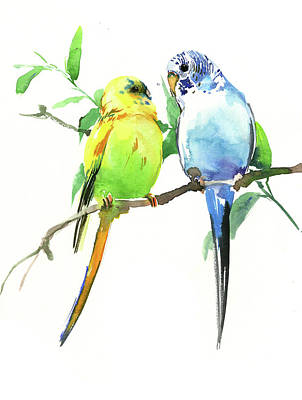 Painting - Budgies by Suren Nersisyan