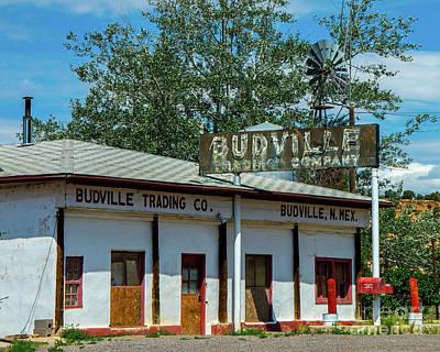 Photograph - Budville by Steve Whalen