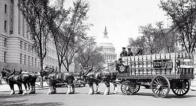 Budweiser Beer Photograph - Budweiser Clydesdale Horses In Prohibition Washington D C by Daniel Hagerman
