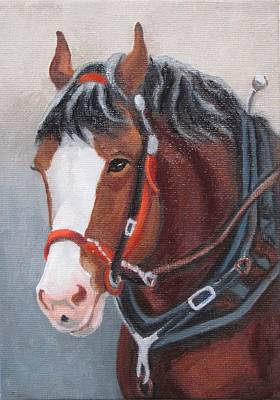 Painting - Budweiser Clydesdale by Ruth Soller