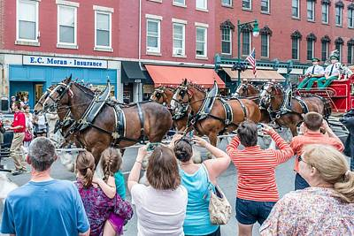 Clydesdale Photograph - Budweiser Clydesdales In Rockland Maine by Tim Sullivan