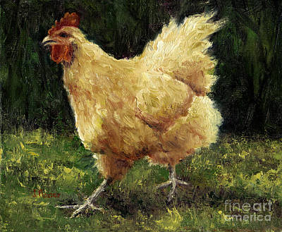 Buff Orpington Chicken Art Print