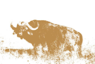 Water Buffalo Wall Art - Photograph - Buffalo 4 by Joe Hamilton