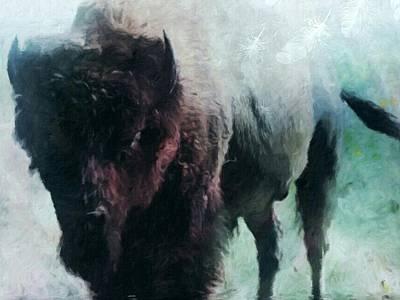 Buffalo American Bison Art Print