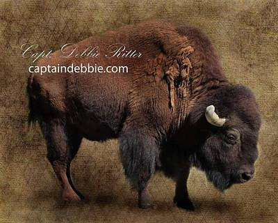 Photograph - Buffalo Art Piece 2 by Captain Debbie Ritter