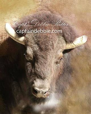 Photograph - Buffalo Art Piece by Captain Debbie Ritter